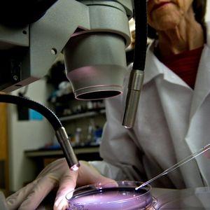 Legionnaires' outbreak linked