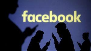 Facebook shares slump 20%