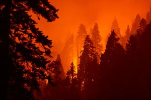 West Coast wildfires are