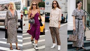 Leopard Print Was a Street