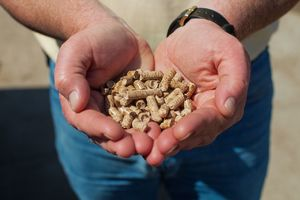 Wood Pellets Draw Fire as