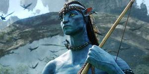 Avatar Theme Park Videos