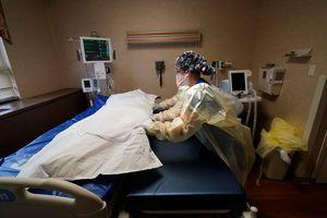 COVID's U.S. death toll on