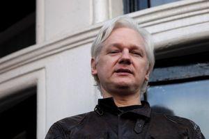 That Julian Assange Twitter