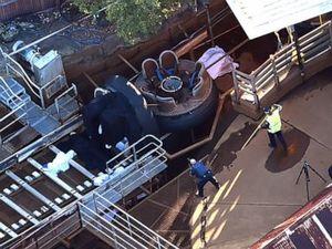Australian park owner fined