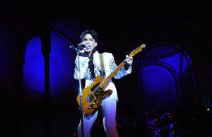 Prince's Family Sues Illinois