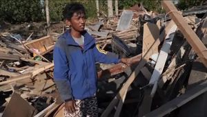 Indonesia quake survivors grow