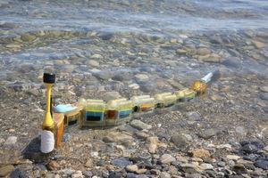 Modular robotic eel hunts for