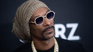 Snoop Dogg Facing Copyright