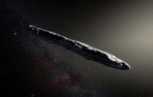 Our first interstellar visitor
