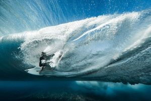 The Winning Action Sports