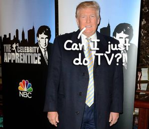 The Celebrity Apprentice - TV.com