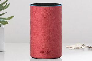 Amazon's Echo speaker gets the