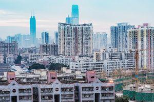 Real Estate Developer Joins