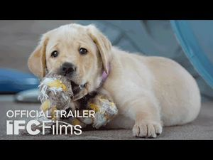 Pick of the Litter Documentary