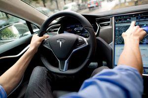 Tesla drivers who abuse