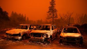 California wildfires: Power
