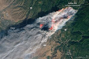 Deadly wildfire levels