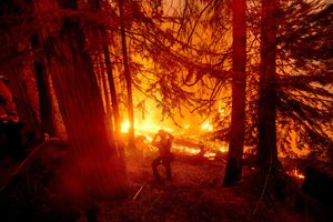 Wildfires rage across Pacific