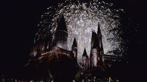 The Wizarding World Theme Park