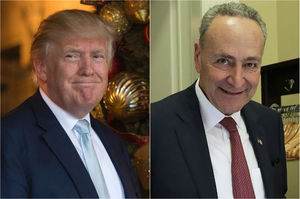 Trump tells Schumer he likes