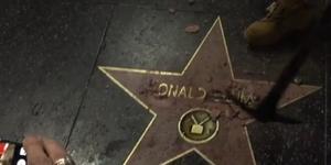 Someone Demolished Donald