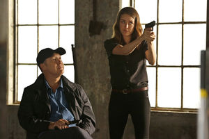 'The Blacklist' Star Megan