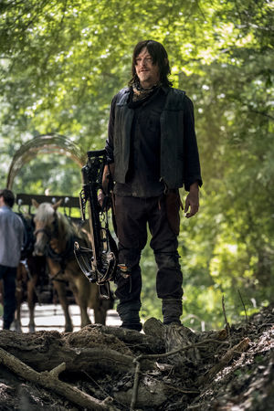 THE WALKING DEAD Might Be