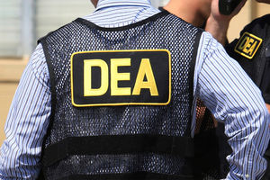 Once-standout DEA agent says