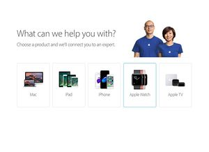 Apple Launches Get Support