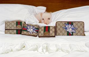 Gucci Releases Capsule
