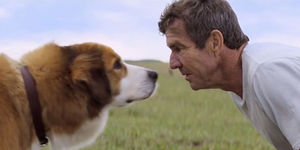 A Dog's Purpose Cancelled Its