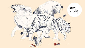 Which Animal Kills the Most