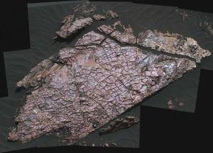 Desiccation Cracks on Mars