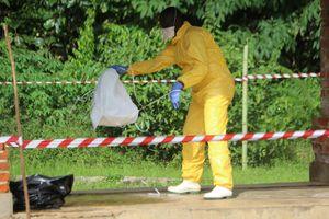 Ebola Outbreak in Dense