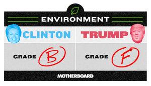 Trump vs. Clinton: Who's